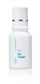 Day Collagen